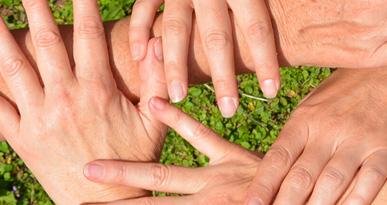 Hände, die ineinander greifen. Foto: Kerstin Weidner
