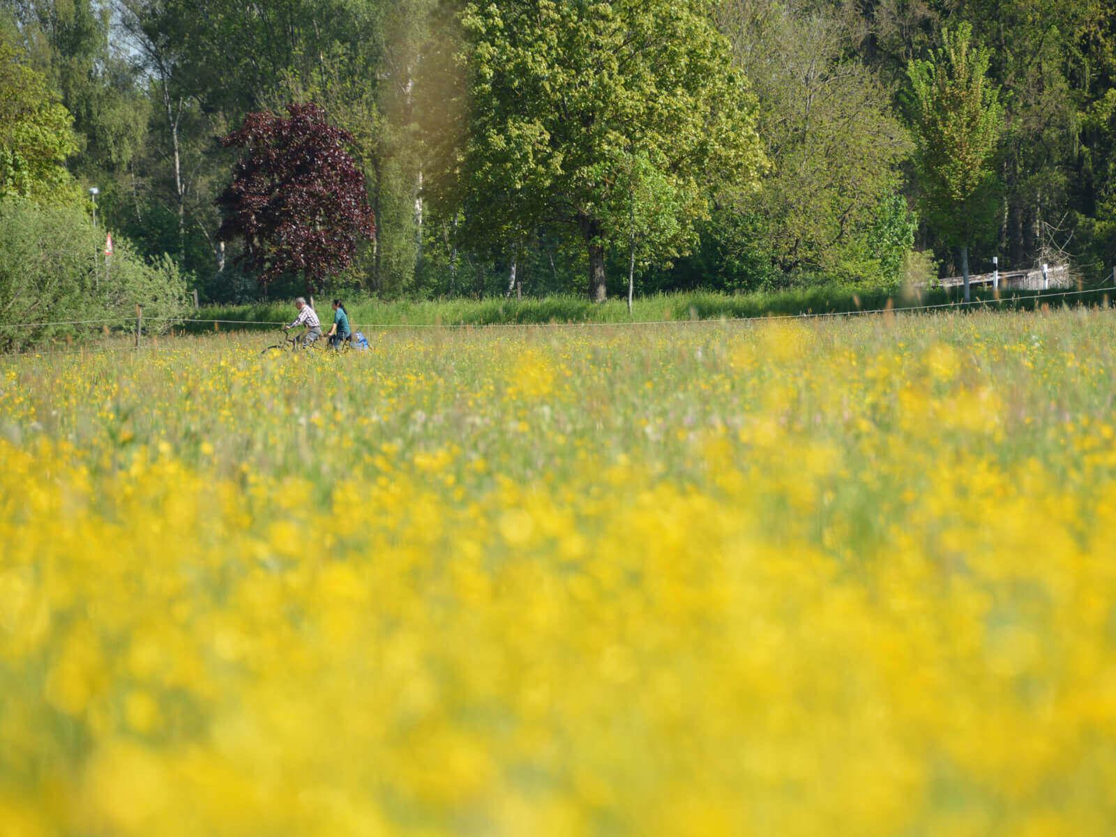 Radfahrer im Schmuttertal. Foto: Kerstin Weidner