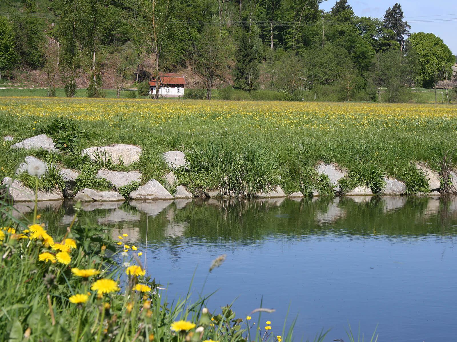 Blick über das Schmuttertal auf das alte Wasserhaus der Loderberggruppe. Foto: Kerstin Weidner