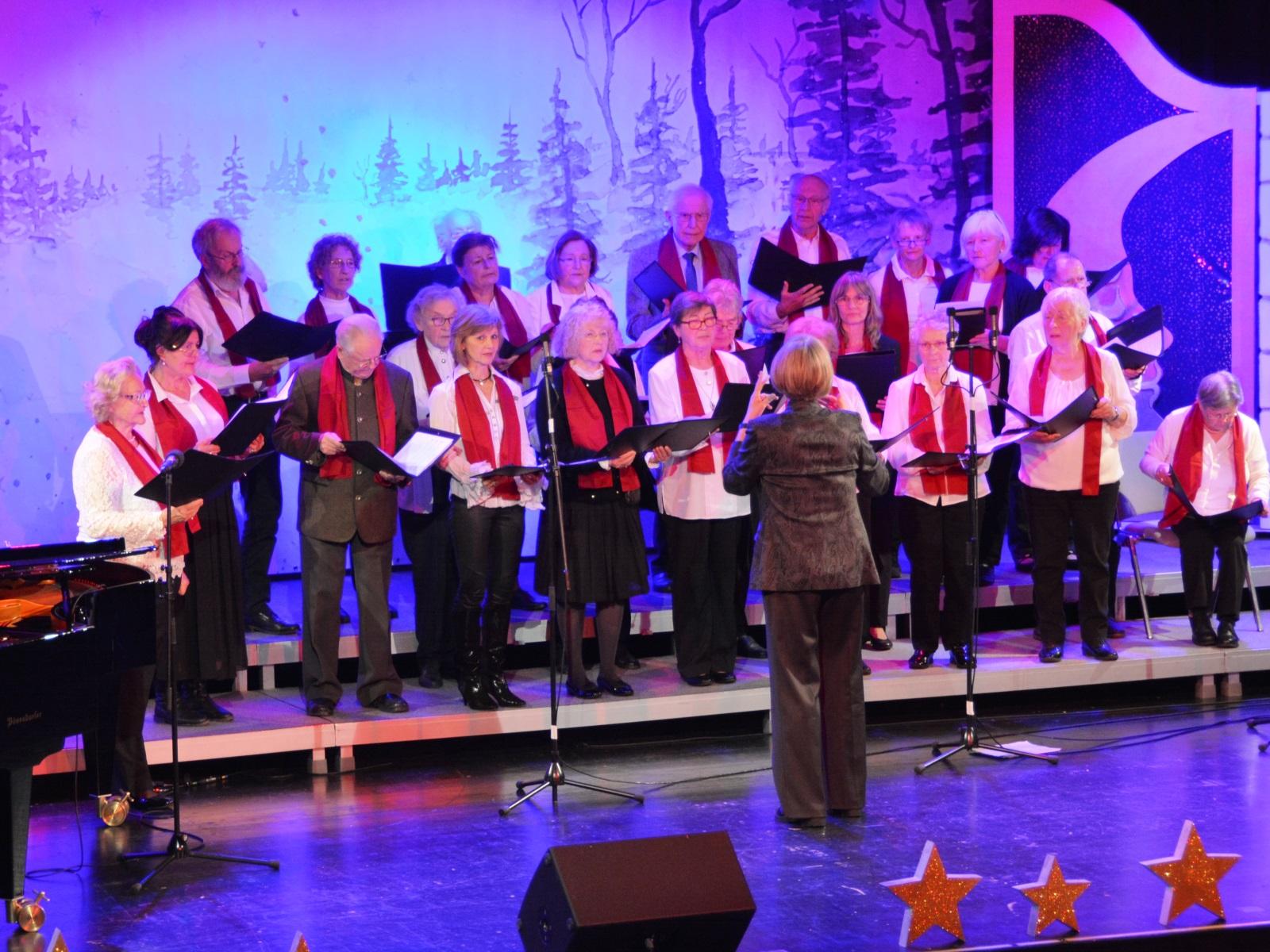 """Die Seniorensinggruppe """"Silverbirds"""" sangen Weihnachtsklassiker zum Mitsingen."""