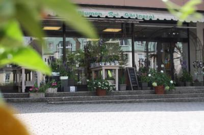 Geschäftseingang Von-Rehlingen-Straße 21