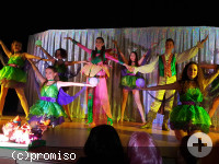 Showtanzgruppe in grün, lila und gelben Glitzerkostümen