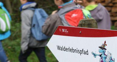 Eine Gruppe von Kindern begibt sich auf den Walderlebnispfad. Foto: Kerstin Weidner