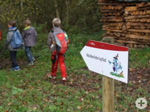 Kinder besuchen den Walderlebnispfad.
