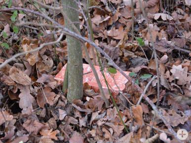 Dieses Ziegelsteinversteck gilt es im Stadtgebiet von Neusäß zu finden.