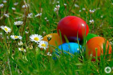 Ostereier im Gras. Bild: pixabay