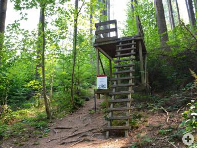 Der Hochstand ist eine Station des Walderlebnispfades im Hauserwald.